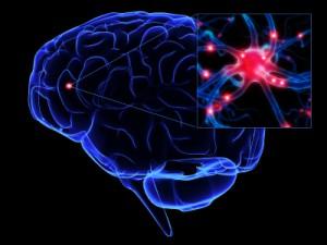 brein erectiestoornis