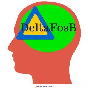 DeltaFosB pornoverslaving